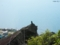 雄冬岬とカラス
