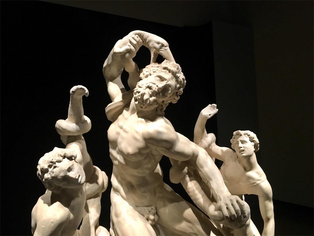 ミケランジェロと理想の身体の《ラオコーン(ヴィンチェンツォ・デ・ロッシ作)》