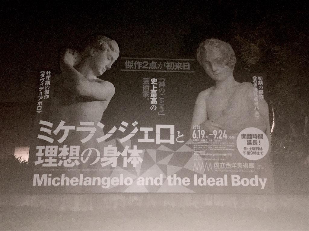 ミケランジェロと理想の身体の《ダヴィデ=アポロ》と《若き洗礼者ヨハネ》