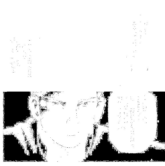 f:id:paradisecircus69:20170209232403p:plain