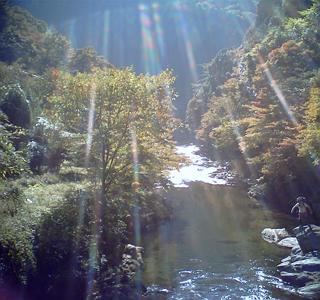 f:id:paraiso-gojo:20101113182426p:image