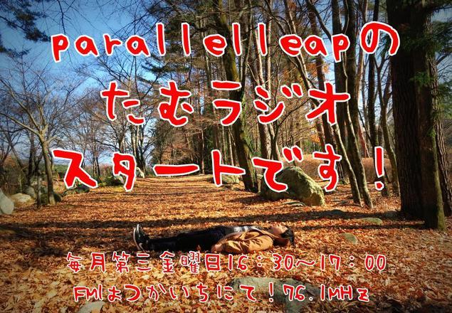 f:id:parallelleap:20161118233934j:plain