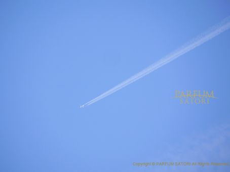 120224飛行機雲2.jpg
