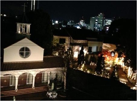 121214神戸夜景2.jpg