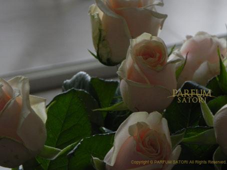 130708マルシェのバラ.jpg