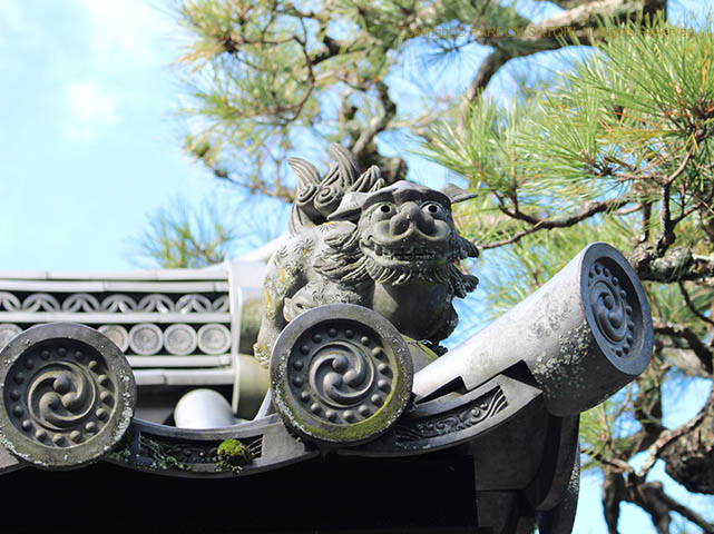 171205京都10 哲学の道 2.jpg