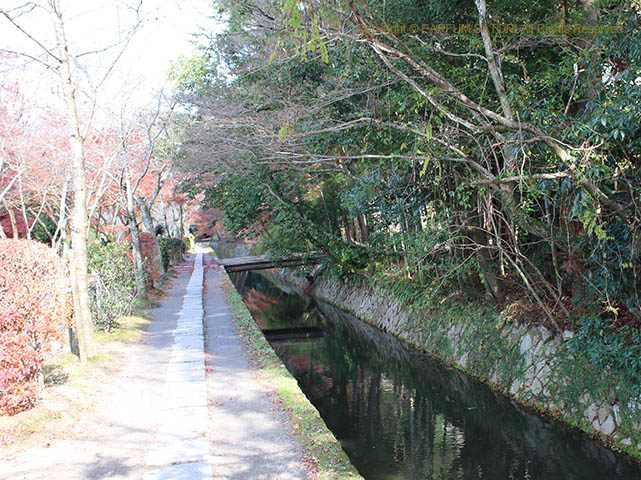 171205京都11-2 哲学の道.jpg