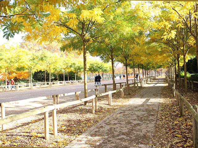 181208Luxembourgpark1.jpg