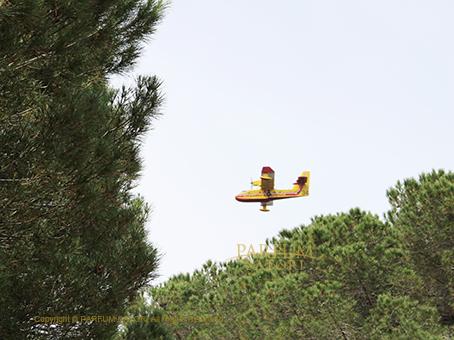 20160604島飛行機.jpg
