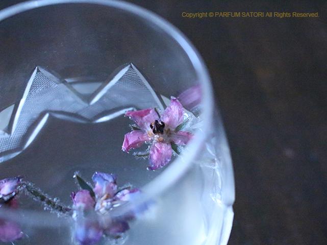 f:id:parfum-satori:20200417144838j:plain