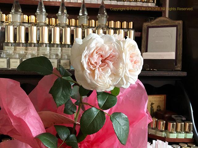 オールドローズ,old rose,プリンセスヴェール,昔バラ
