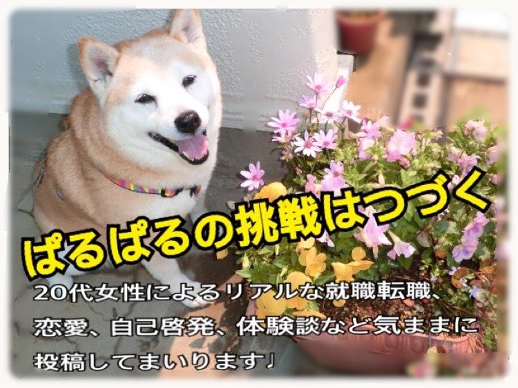 ぱるぱるブログ