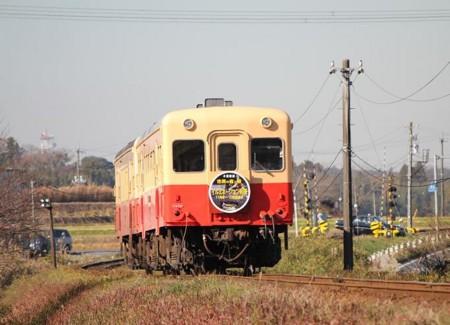 20101204124827