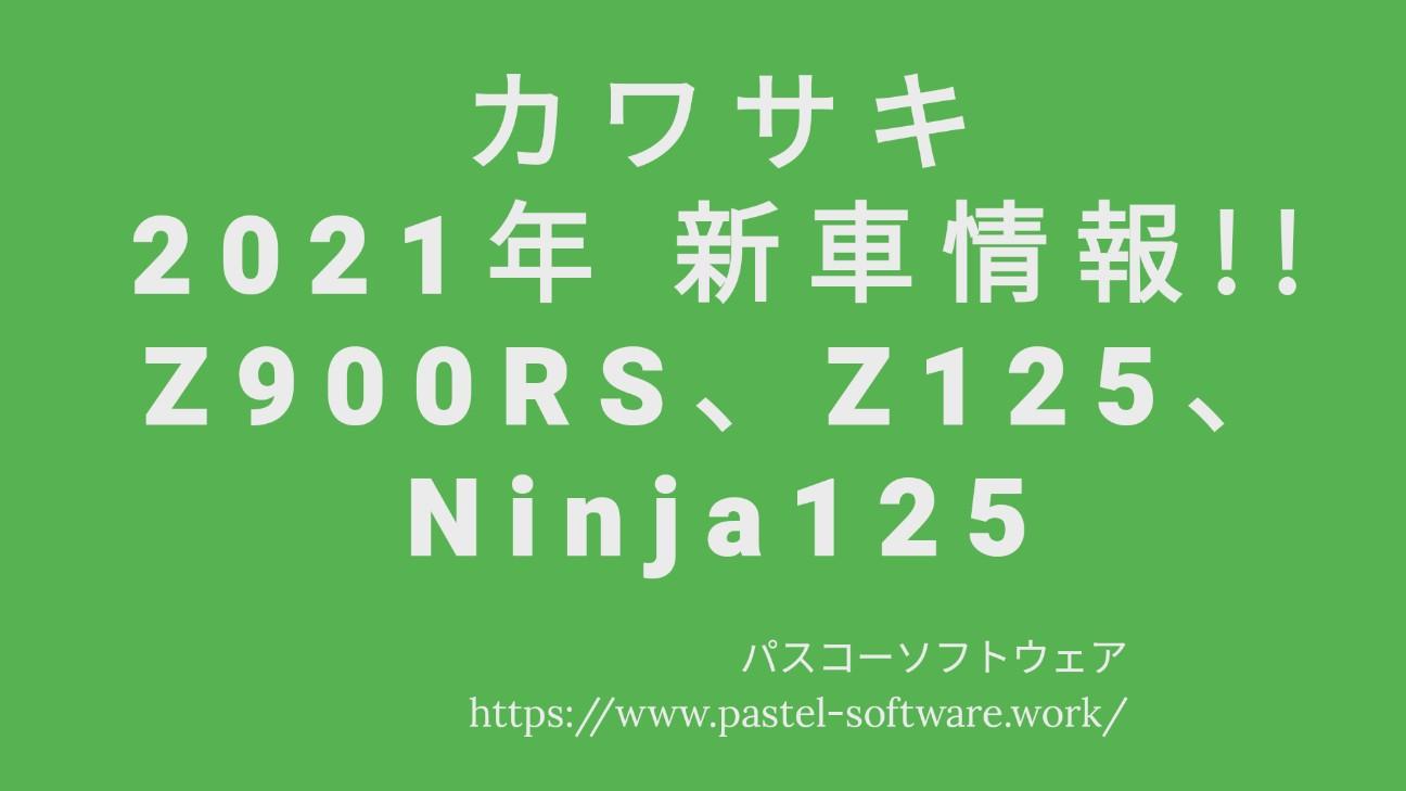 f:id:pastel_soft:20201103221431j:image