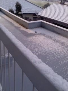 雪が積もってた