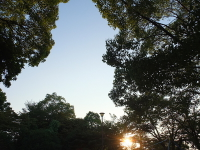 2020年8月24日 夕陽