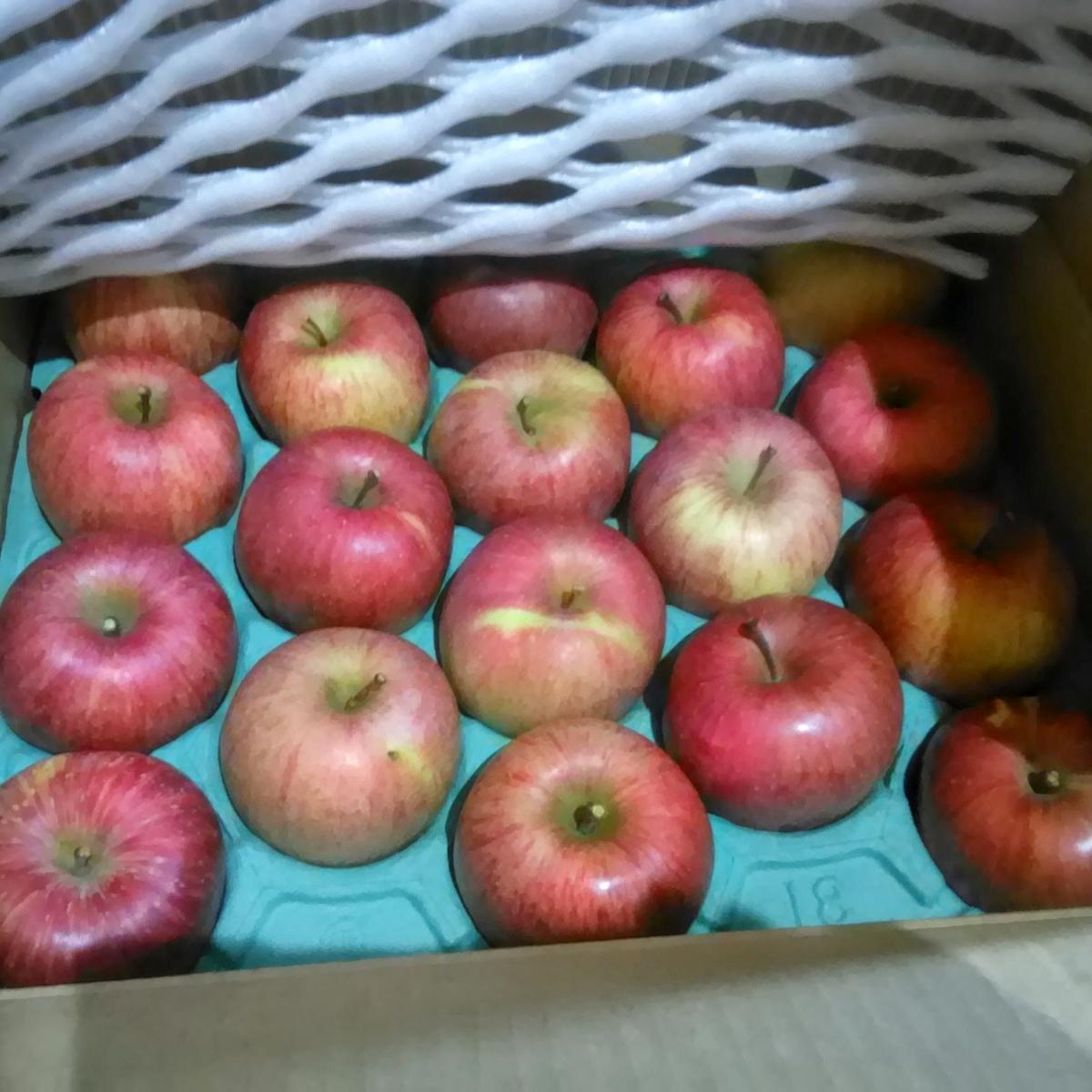 ふるさと納税のりんご