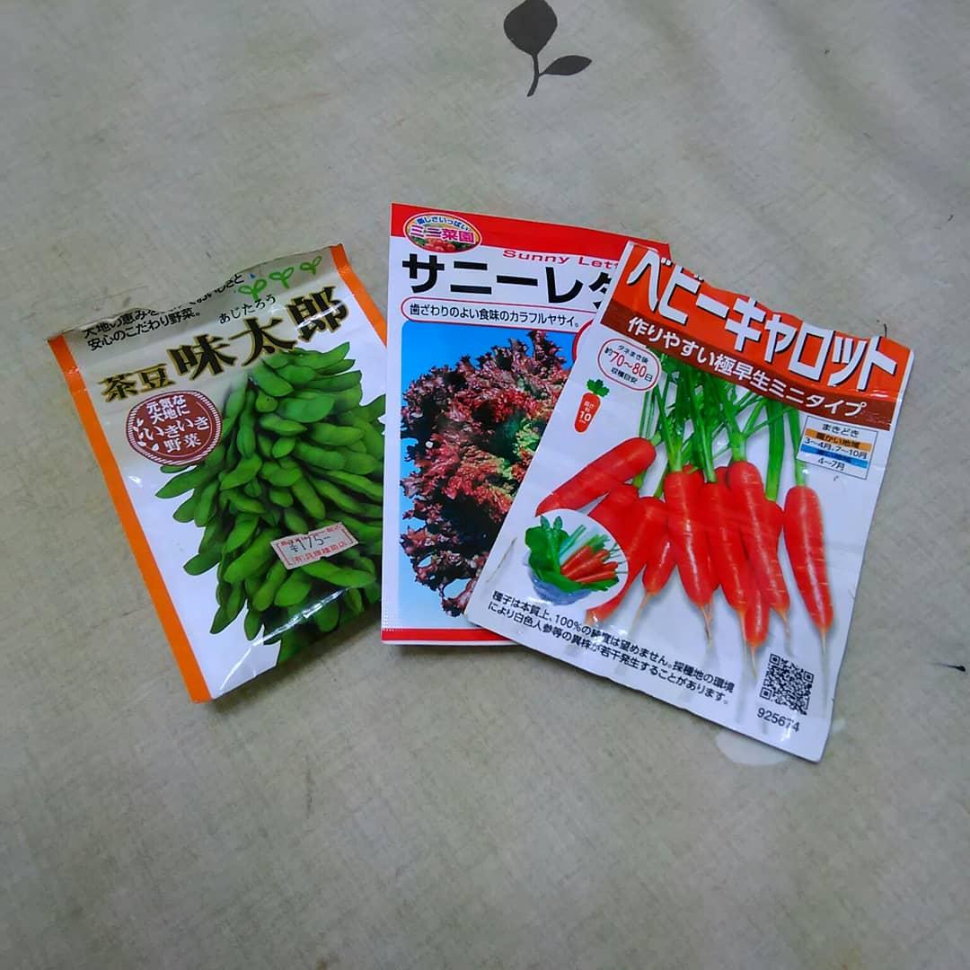 春野菜・種まき