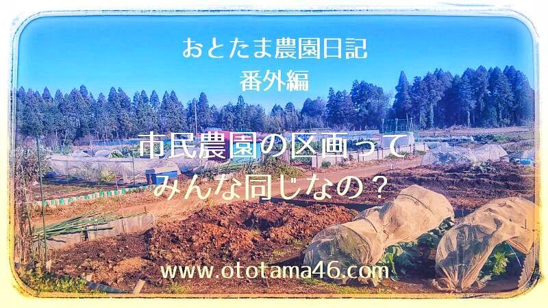 市民農園・位置・区画