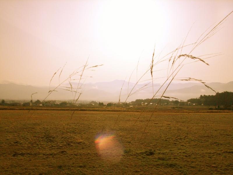 f:id:peacechyhi:20120416064100j:image