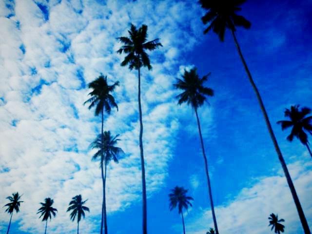 f:id:peacechyhi:20120723055102j:image