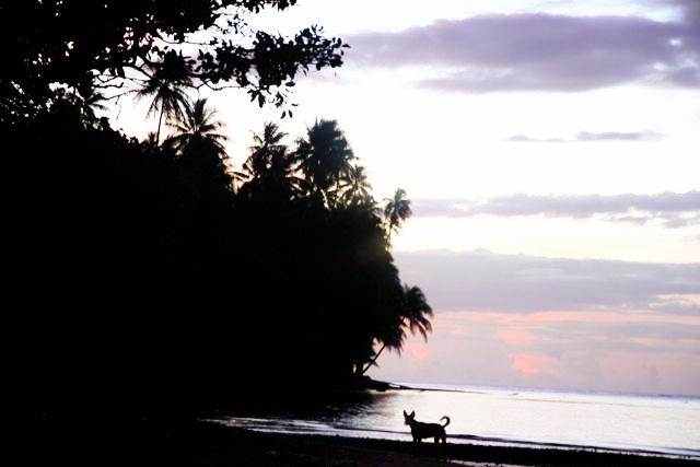 f:id:peacechyhi:20121225171904j:image