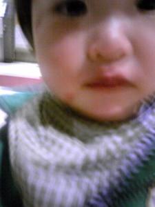 f:id:peanut_butter:20120315013330j:image