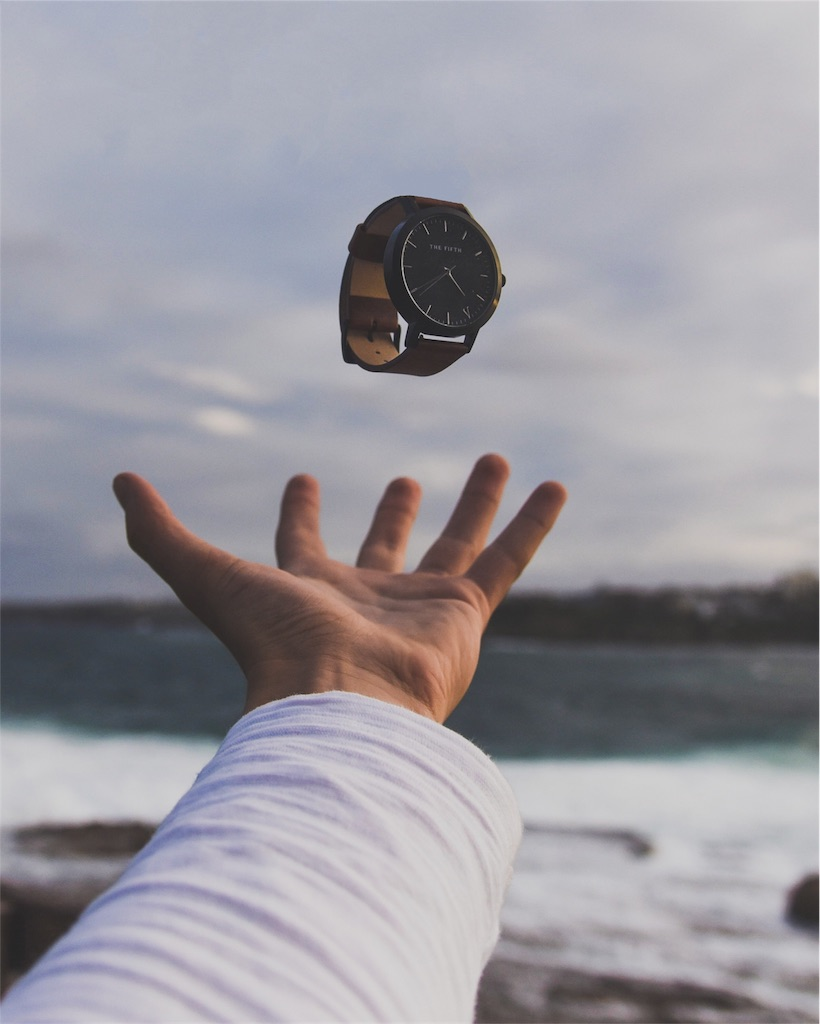 f:id:pearlmoon-horizon:20170430165546j:image