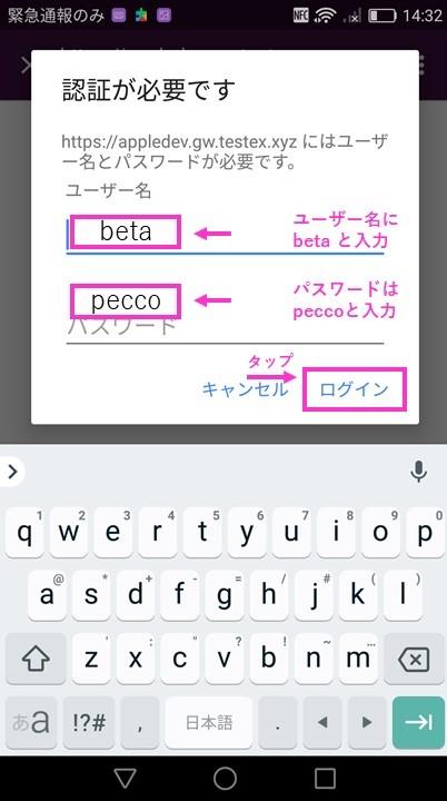 f:id:pecco-gw:20190815155602j:plain