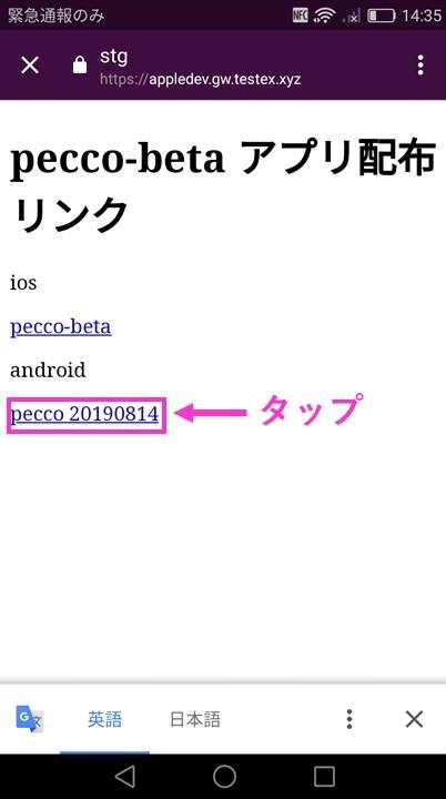 f:id:pecco-gw:20190815155744j:plain