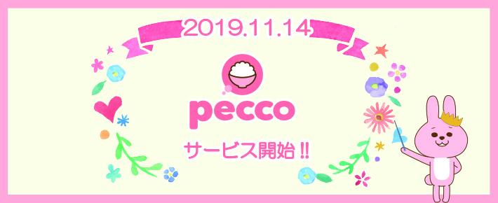f:id:pecco-gw:20191108181729j:plain