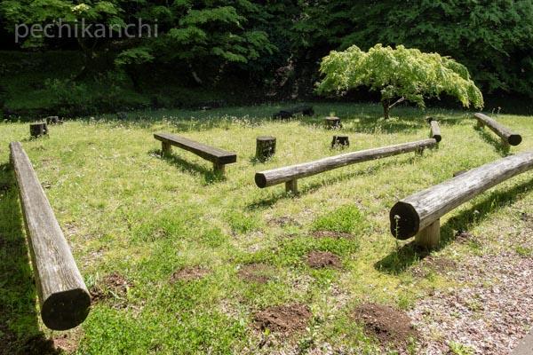 f:id:pechikanchi:20210506132618j:plain