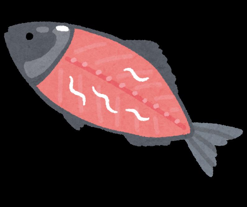 魚に付着するアニサキス