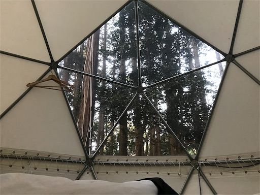 innthepark(インザパーク)の吊りテント内部の様子