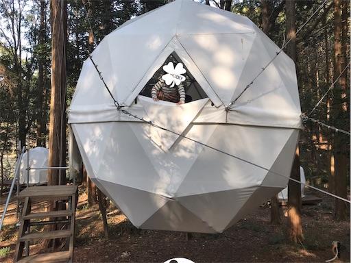 innthepark(インザパーク)の吊りテントから顔を出す人