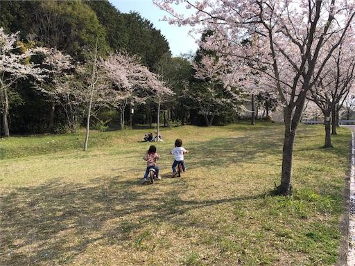 INNTHEPARK(インザパーク)近くの桜と花見スポット
