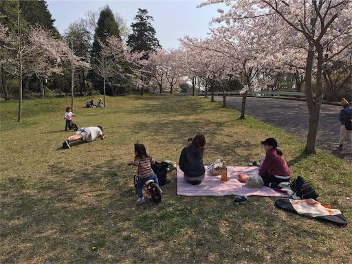 INNTHEPARK(インザパーク)の桜と花見スポット