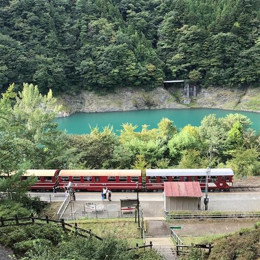 奥大井湖上駅の展望デッキからトロッコ列車を眺める
