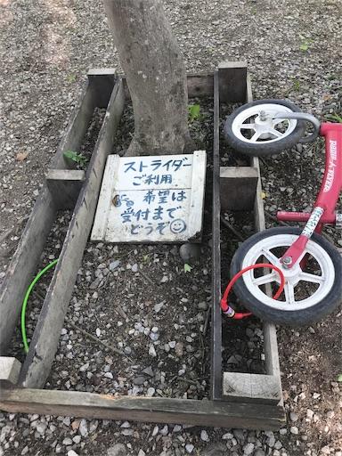 長瀞オートキャンプ場の遊具