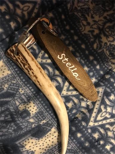 長瀞オートキャンプ場のグランピング「ステラ」の鍵