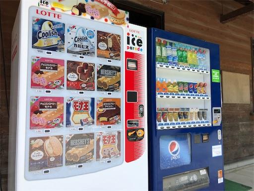 青野原オートキャンプ場のアイスの自販機