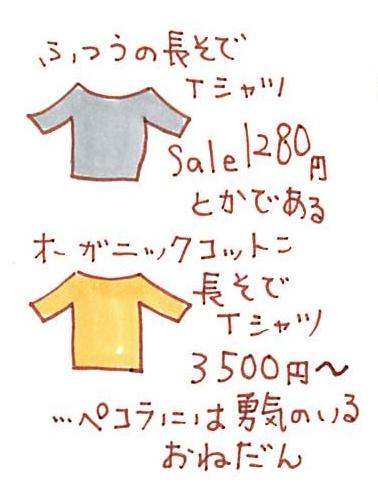 f:id:pecorafujin:20180105165921j:plain