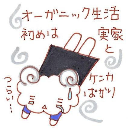 f:id:pecorafujin:20180106102343j:plain