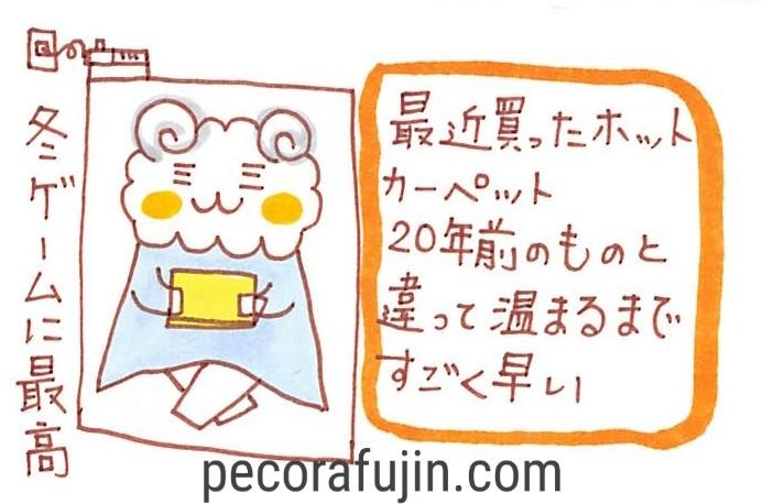 f:id:pecorafujin:20180127143838j:plain