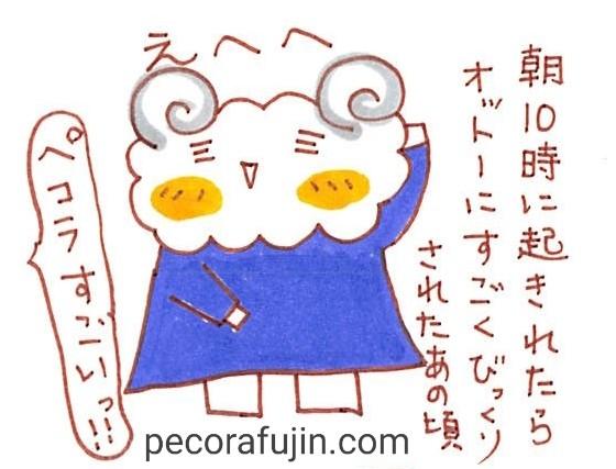 f:id:pecorafujin:20180219095107j:plain