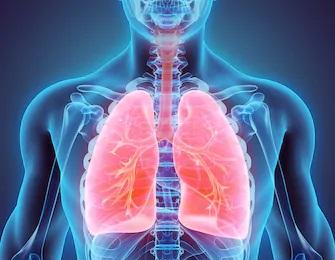半身浴は心臓や肺に負担がかからない