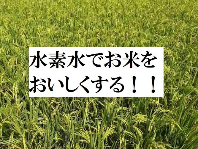 水素水でお米をおいしくする