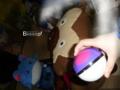 [pokemoncollectors][lj][bibarel]