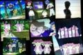 ポケモンアニメ ベストウィッシュ 20110609