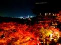 京都新聞写真コンテスト 秋の清水寺と京都タワー